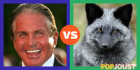 Which is the better silver fox