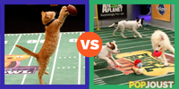 Which Super Bowl alternative would you rather watch