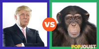 Who039s more likely to be elected President of the USA